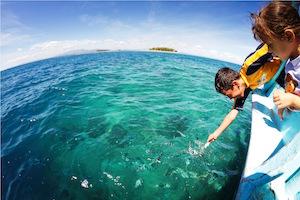 activities-surf-resort-fiji