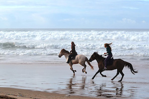 Surfcamp in Beach Algarve Horse Riding