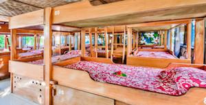 Shared-room-fiji-surf-resort-726x373