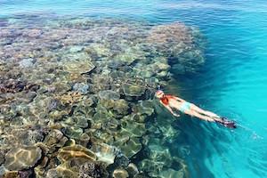 snorkelling-fiji