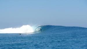 surf-fiji-wave