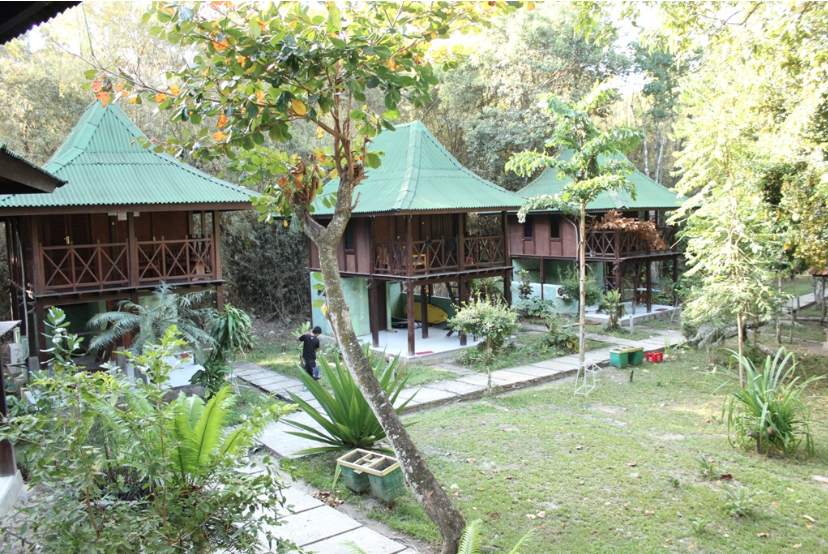 Bungalows at our Surf Camp
