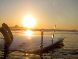conil-sunset-board
