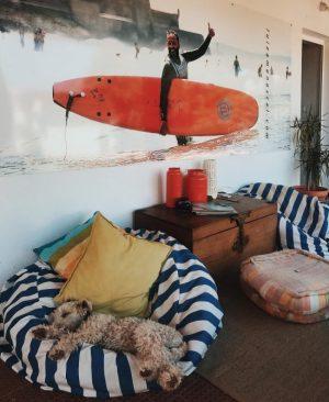 lisbon-surf-camp-cascais-surf-hous-cacasis