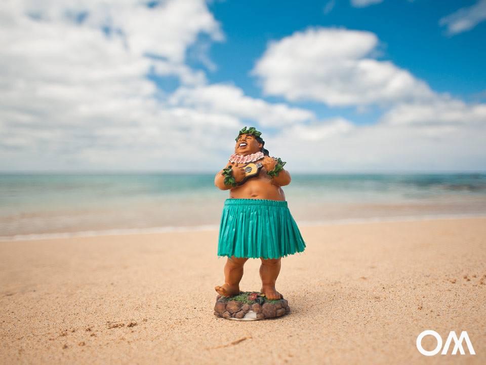 sotavento-surf-hawaii