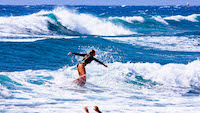surf-guest-good-tenerife