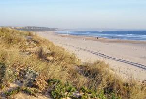 Surf-School-Teens-Camp-Lisbon-beach-view