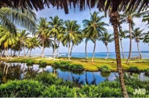 Mentawai Surf Resort Bungalow's View