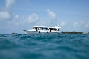 Surf Charter in Maldives